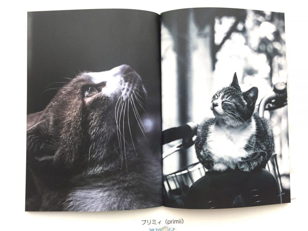 プリミィ ペットのフォトブック