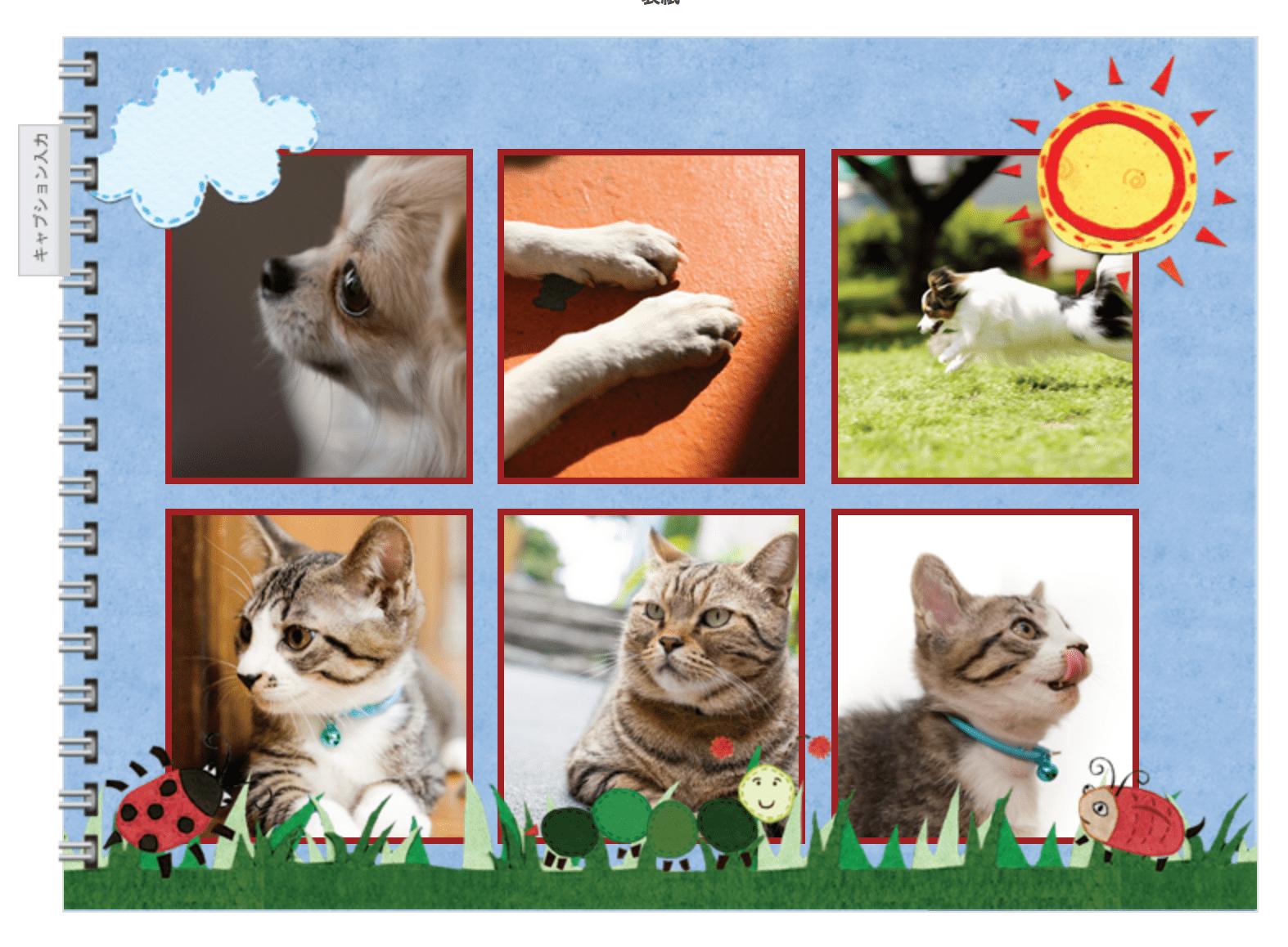 ペット写真におすすめのフォトブック4選