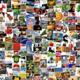 写真をデータ化してフォトブックを作る方法!(現像・プリント済の写真・ネガ・ポラロイド等)