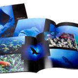 ダイビング・魚図鑑をフォトブックで自作する