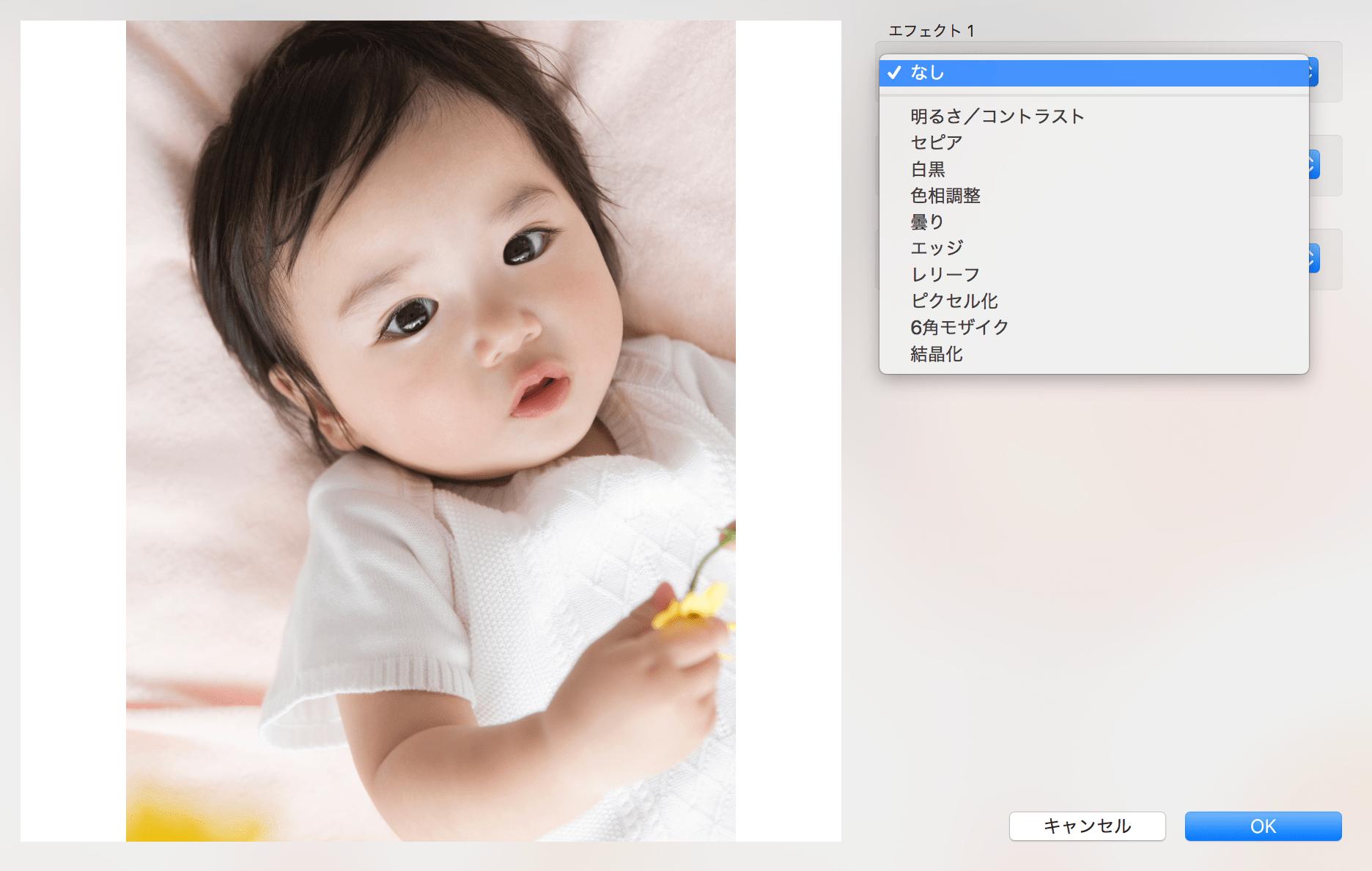 ビスタプリント編集ソフト 加工エフェクト
