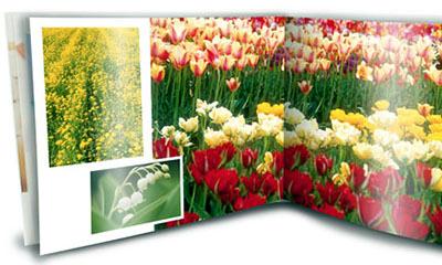 Vistaprint オランダ生まれ、パリ育ちの印刷会社