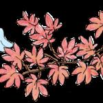 七五三のフォトブック素材:紅葉・鳥・花