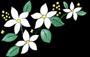 結婚式のフォトブック素材:花・白い花・百合
