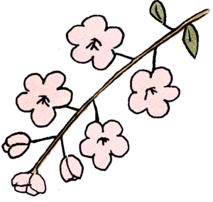 梅の花:プレゼント・祖父母・敬老の日・お正月・誕生日・七五三・和風のスタンプ素材