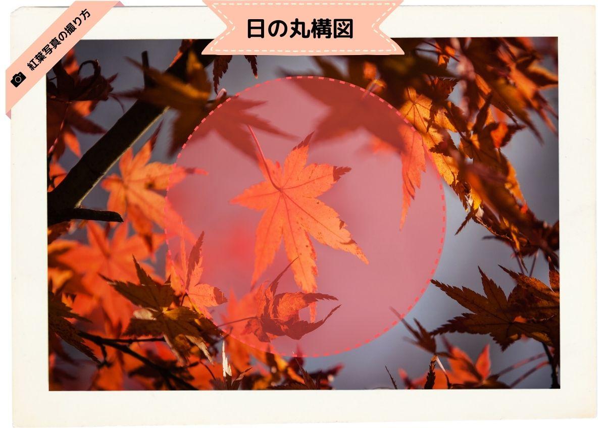 日の丸構図:紅葉
